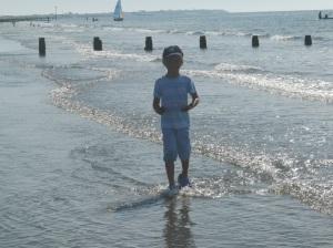 Beach Walks...at navigating by joy homeschool blog