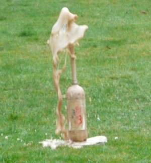 coke and mentos geyser - homeschool science at navigatingbyjoy